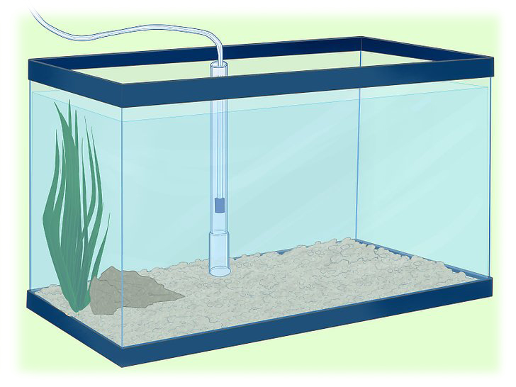 How to Install an Undergravel Filter in Aquarium  طریقه نصب فیلتر شنی آکواریوم