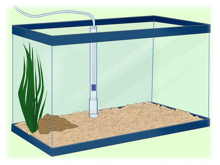 روش نصب فیلتر زیر شنی آکواریوم How to Install an Undergravel Filter in Aquarium